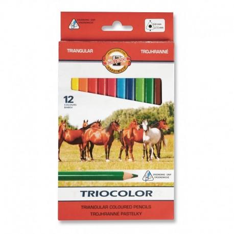 Seturi creioane color TRIOCOLOR JUMBO diametru 9.6mm