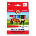 Set 12 creioane color TRIOCOLOR Jumbo